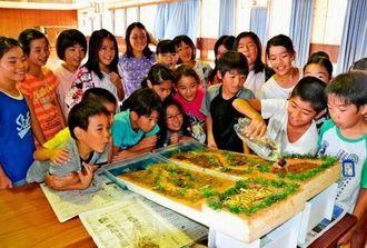 赤土流出の仕組みを模型で確かめる子どもたち=8日、浦添市立沢岻小