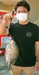 宜野湾海岸で31センチ、0・59キロのカーエーを釣った吉田洸平さん=8日