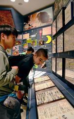 奄美大島に生息するカブトムシの標本に見入る隊員たち=24日、鹿児島県奄美市・奄美博物館