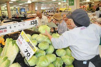 野菜の生鮮品売場で特価販売のキャベツを補充する店舗スタッフ=29日、那覇市小禄のイオン那覇店