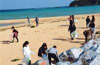 やんばる美しく 550人が海岸清掃/中部日経ビジネス