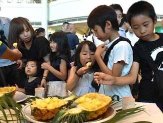 東村産のパイン「ゴールドバレル」を試食する子どもたち=1日午前、那覇空港