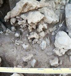 国の史跡に指定するよう答申された「白保竿根田原洞穴遺跡」の人骨検出状況=2015年6月、石垣市白保(県教育委員会提供)