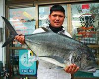 [有釣天]102センチ14.5キロのガーラ、ポインピングで弱らせ