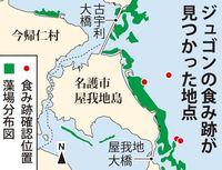 屋我地島周辺にジュゴン食み跡 餌場が移動か? 沖縄県調査で確認