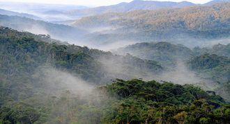 朝焼けのやんばるの山々=2017年11月6日、国頭村