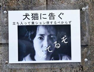 壁に貼られたチラシ=3日、大宜味村喜如嘉