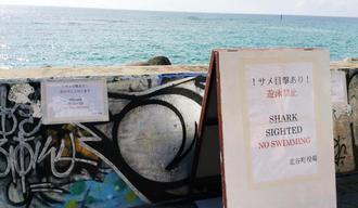 オオメジロザメが目撃され、設置された看板=北谷町美浜・サンセットビーチ近く
