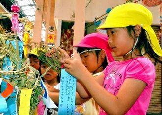 願いが書かれた短冊をササの葉に飾る園児=6日、沖縄市・中央