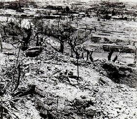 沖縄戦で焼けた首里城一帯。手前が城壁で奥の右に円鑑池、左に龍潭が見える=1945年ごろ撮影(那覇市歴史博物館提供)