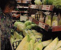 野菜が高い! 猛暑と長雨のダブルパンチ 来週以降も値上がりか