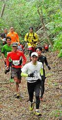 森の中のコースを駆け抜けるランナー=8日、国頭村(田嶋正雄撮影)