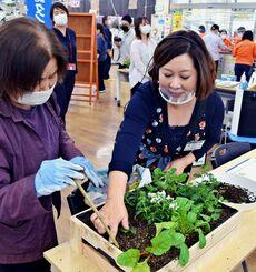 参加者に苗植えを指導する北めぐみさん(右)=13日、浦添市・メイクマン浦添本店
