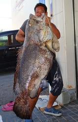 天仁屋崎で118・5センチ、36・2キロのアーラミーバイを釣った仲村直さん=7月27日
