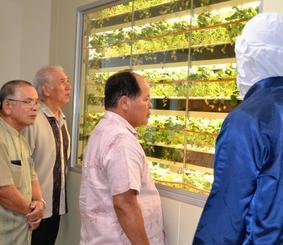 ICTを活用したイチゴ工場を見学する大宜味村の宮城功光村長(右から2人目)ら=2018年7月、大宜味村