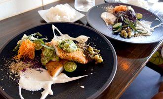 ランチは魚、肉、パスタの3種類から。手前は「舌平目の香草パン粉フライ、キュウリとオクラのソース」