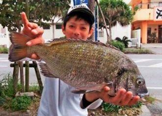 北部海岸で47・3センチ、1・8キロのミナミクロダイを釣った安里祐希さん=8日