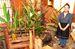 店主の東恩納美枝子さんが植物を生け、店内は庭園のようになっている