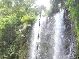 多くの行楽客が訪れる「ター滝」(大宜味村)