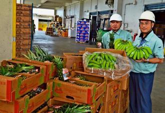 旧盆用に直輸入したバナナとパイナップルをPRする長松九一郎さん(右)ら=6日、那覇青果物卸商事業協同組合