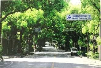 かつてクスノキが生い茂り「緑のトンネル」と呼ばれていた、くすの木通り=沖縄市胡屋(仲宗根健昌さん提供)
