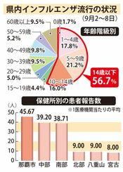 沖縄県内のインフルエンザ流行の状況