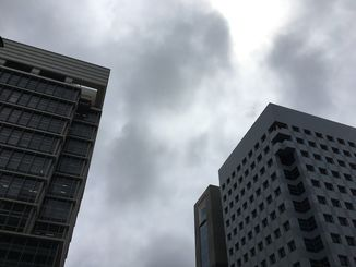 朝、雨が降って以降は曇りの天気が続いています
