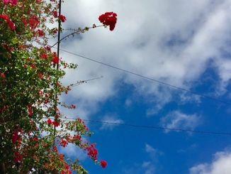 那覇市は晴れています