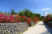外国人に人気! 民泊、沖縄で拡大中 Airbnbでは登録施設300超