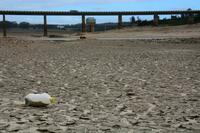 南アフリカ「世界初」干ばつ危機 観光地、水供給停止も