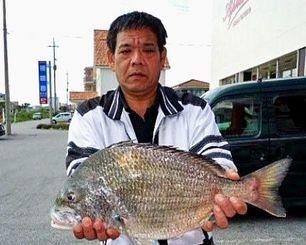 7日、名護市屋我の桟橋で55.6センチ3.72キロのチンシラーを釣った宮里哲博さん