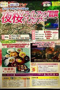 魅力たっぷりツアー提供へ 国内と沖縄の旅行業大手が提携