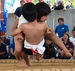 男の子と女の子が同じ土俵で真剣勝負するわんぱく相撲浦添大会=2013年6月