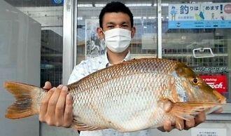 与根海岸で64センチ、3.83キロのタマンを釣った伊仲慶太さん=18日