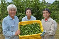 毎日摂りたい〝緑の宝石〟沖縄シークヮーサー<br />沖縄本島北部・本部町大嘉陽を訪ねて
