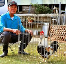 「美声だね。上等さー」。元気よく鳴くチャーンを見守る渡久山盛吉さん=30日午後2時、浦添市経塚・トクヤマ農園