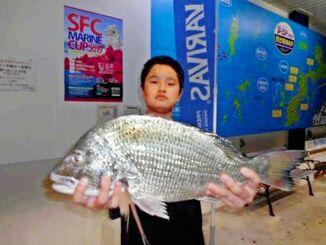 南原漁港で53センチ、2.84キロのチンシラーを釣った伊佐常輝さん=10月26日