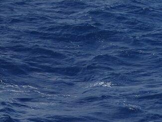 (資料写真)海